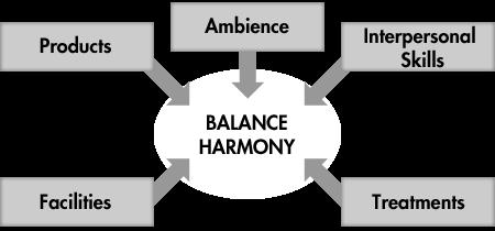 schema expertise